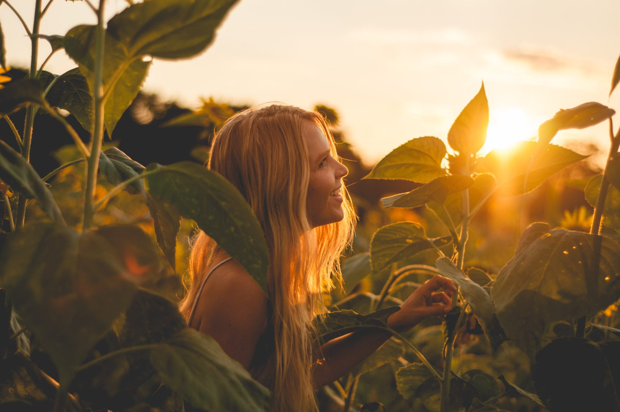 Megan Rae gazing and smiling at a sunflower in the golden light
