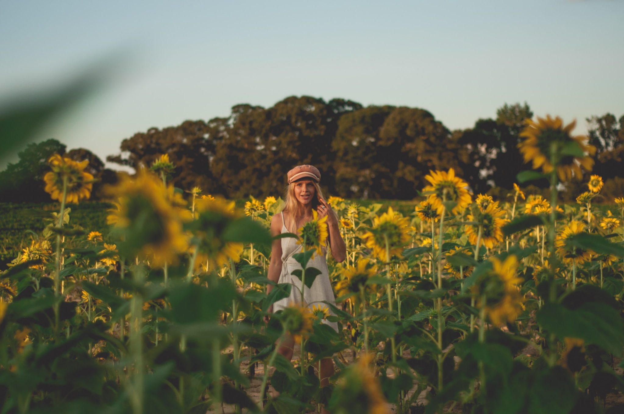 Megan Rae admist a field of sunflowers